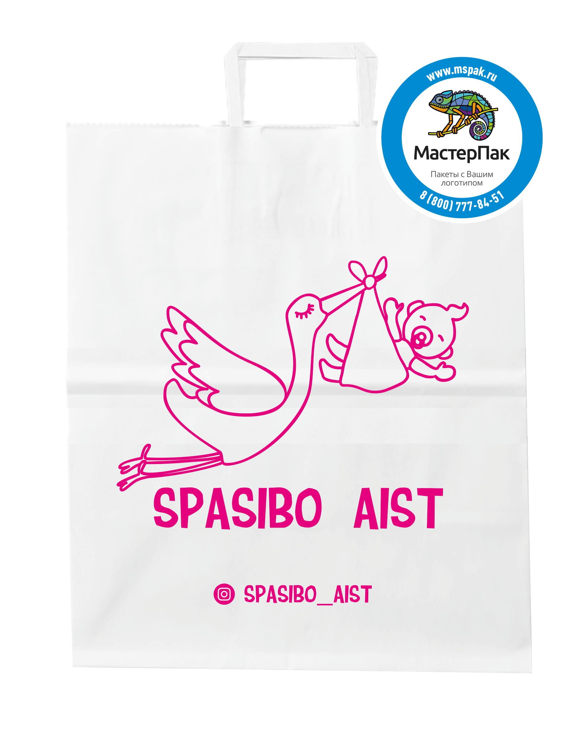 Пакет крафт, бумажный с логотипом Spasibo Aist, Мурманск, 24*28 см