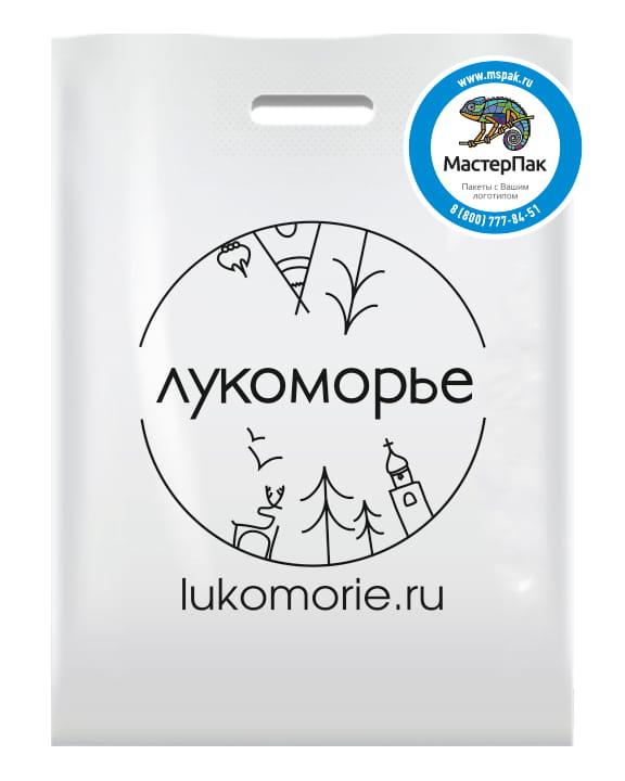 """Пакет ПВД с логотипом туроператора """"Лукоморье"""", Петрозаводск"""