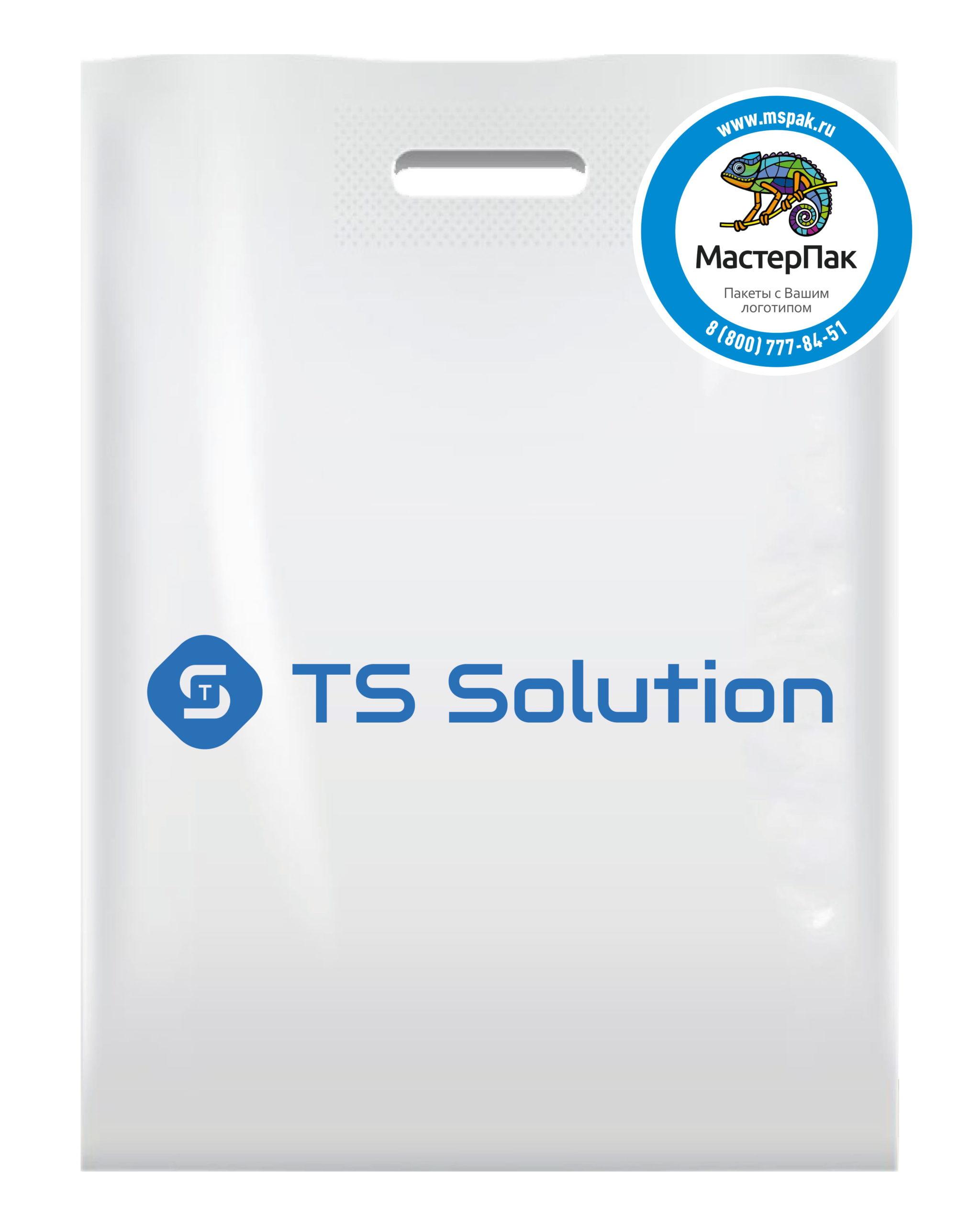 Пакет ПВД с вырубной ручкой и логотипом TS Solution (шелкография)