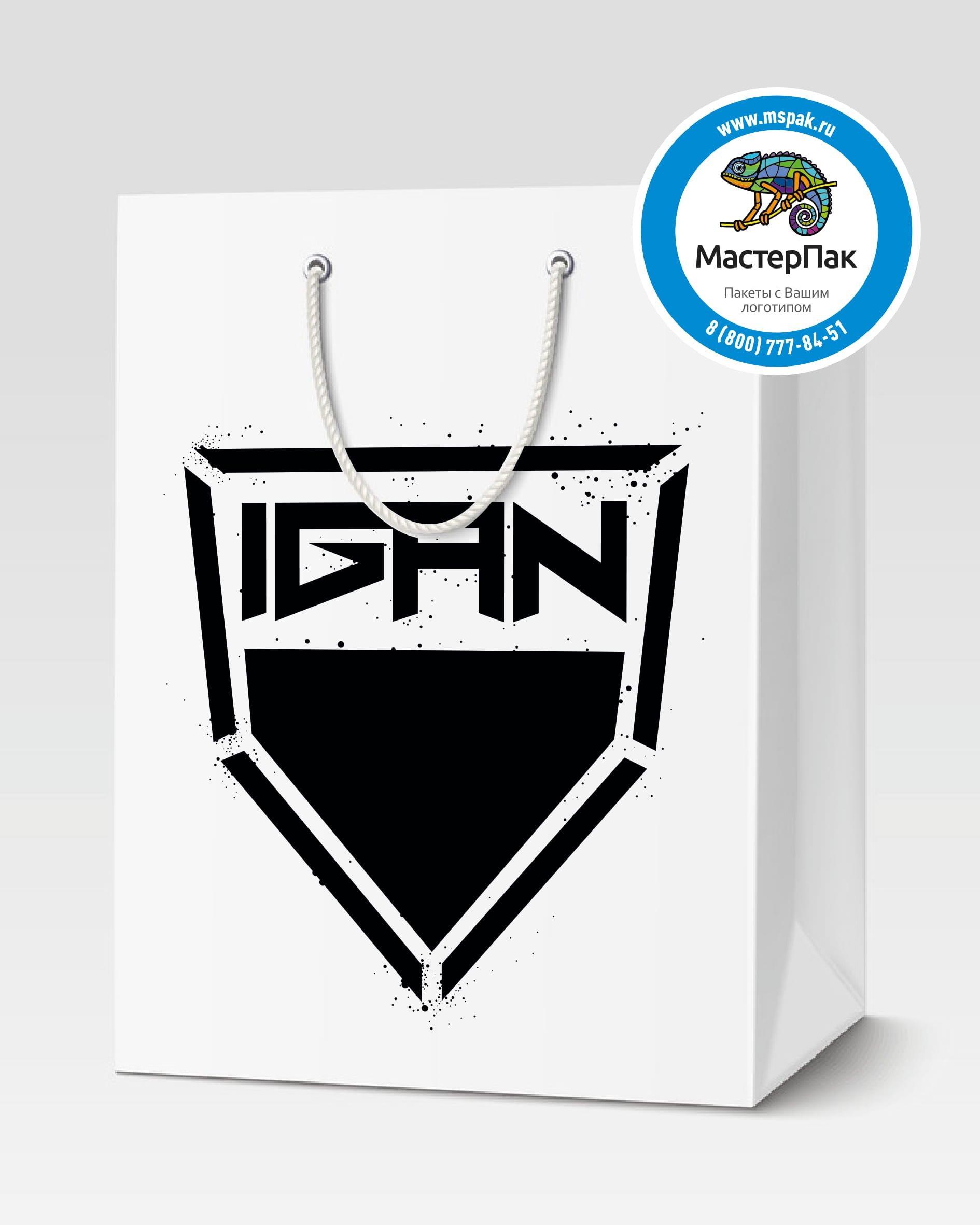 Пакет подарочный, бумажный с логотипом IGan, 30*40, люверсы