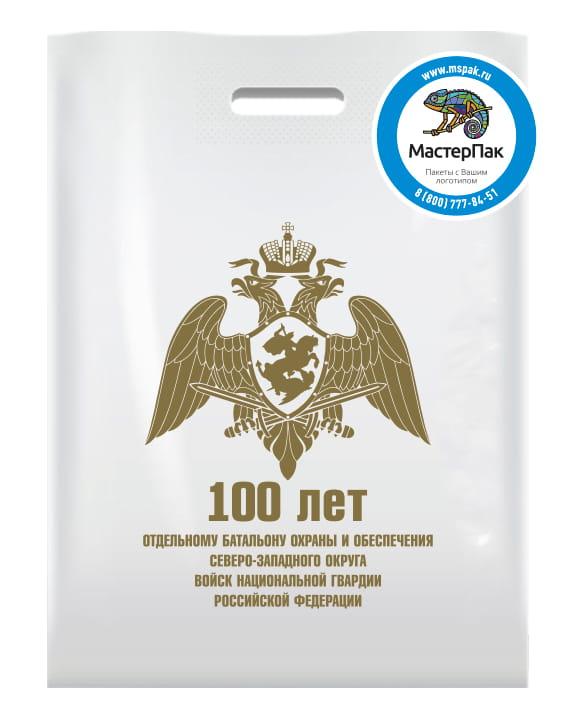 """Пакет ПВД с вырубной ручкой и логотипом """"100 лет батальону охраны"""""""