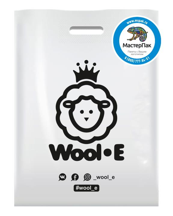 Пакет ПВД, 70 мкм, с вырубной ручкой и логотипом WOOL_E, Спб.