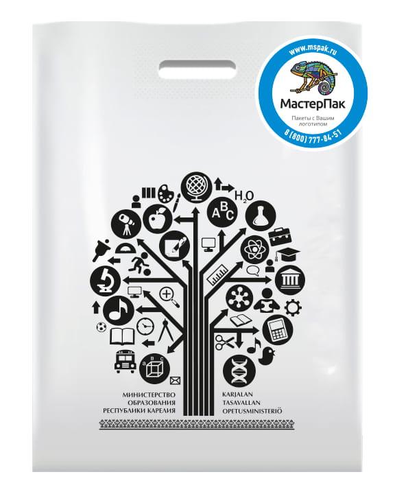 Пакет ПВД, 70 мкм, с вырубной ручкой и логотипом Министерство образования Республики Карелия