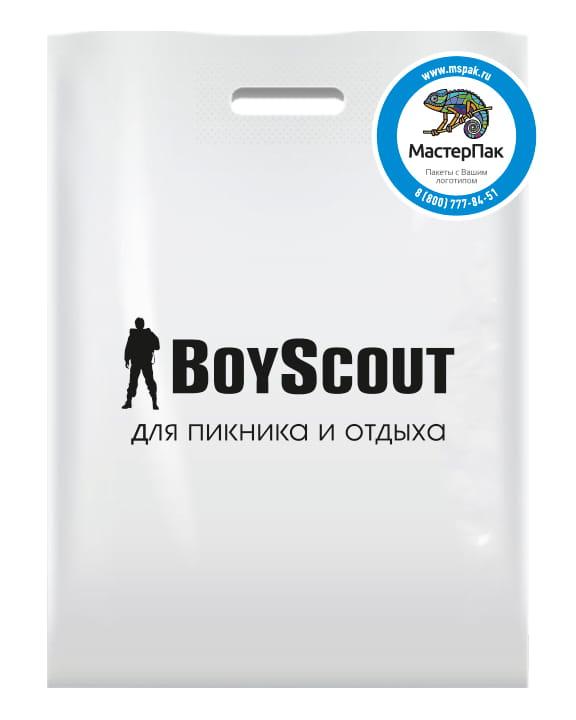 Пакет ПВД, 70 мкм, с вырубной ручкой и логотипом BoyScout, Москва