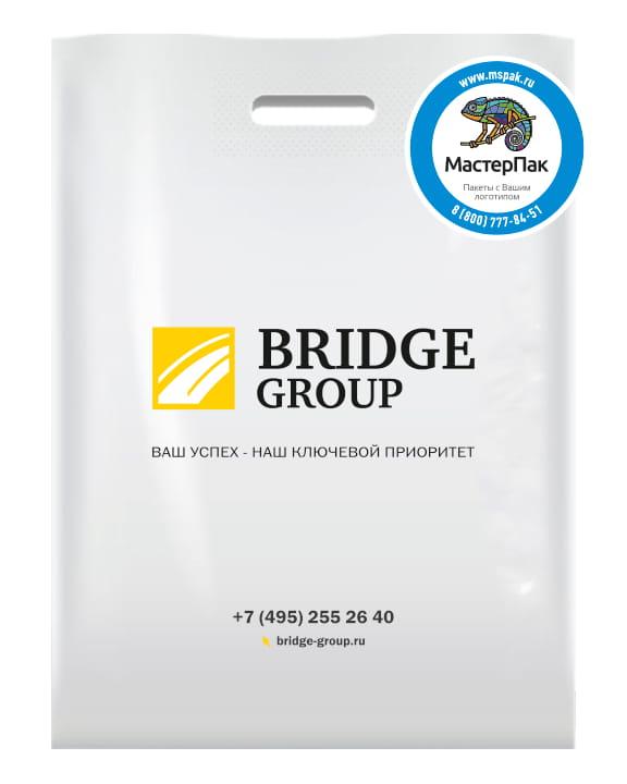 Пакет ПВД, 70 мкм, с вырубной ручкой и логотипом BRIDGE GROUP, Москва
