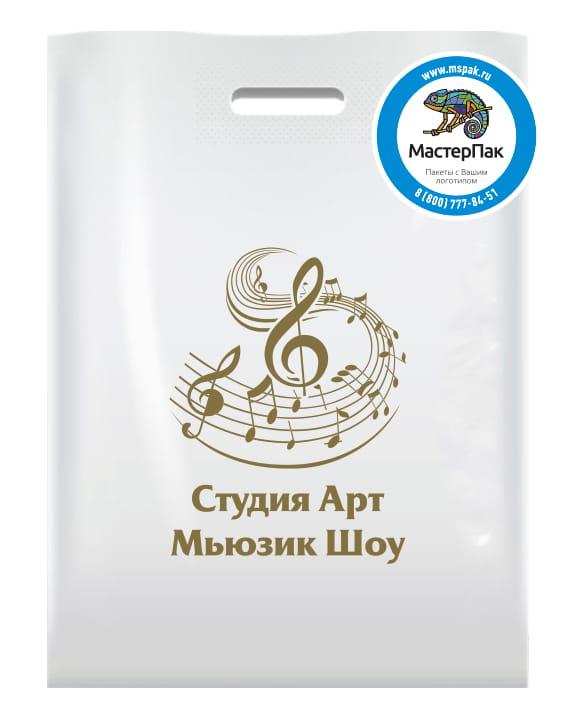 Пакет ПВД, 70 мкм, с вырубной ручкой и логотипом Студия Арт Мьюзик Шоу, Москва