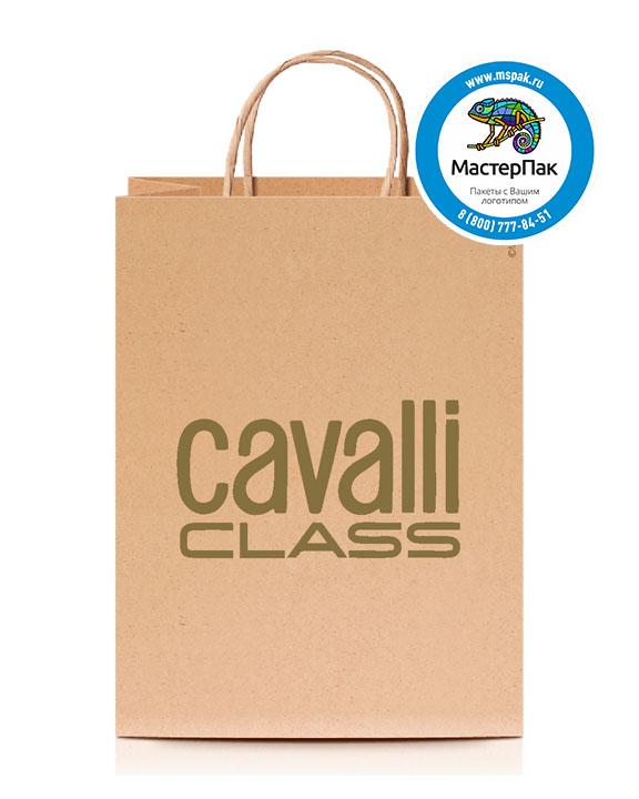 Пакет крафтовый, 80 гр., 35*26*14, крученые ручки с логотипом Cavalli Class