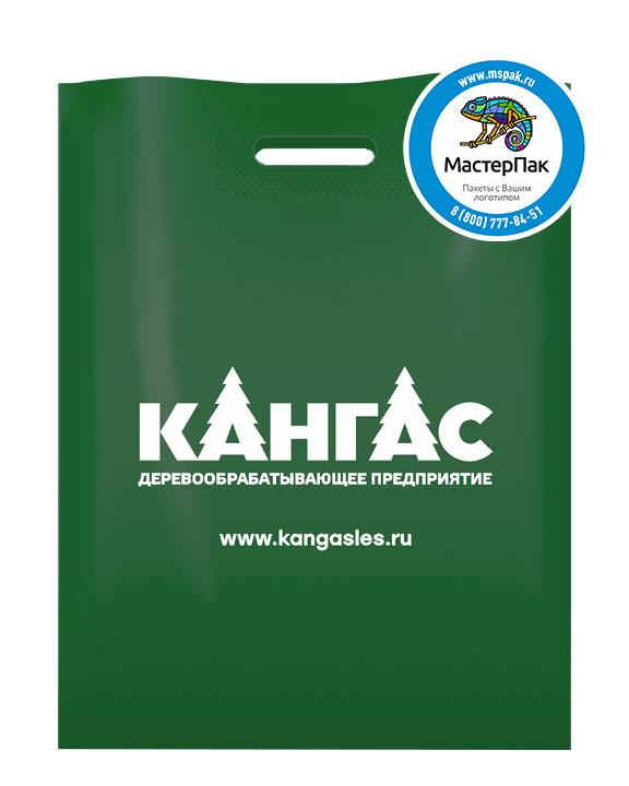 ПВД пакет, 70 мкм, 38*50, с вырубной ручкой и логотипом Кангас