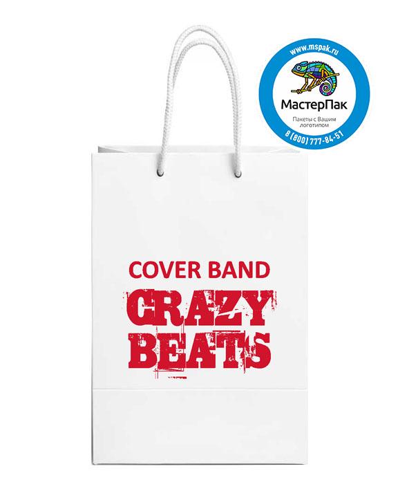 Пакет подарочный, бумажный, 30*40, с люверсами, с логотипом Cover BandCrazy  Beats