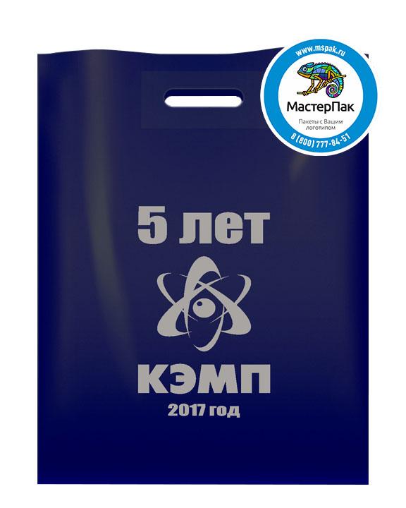 ПВД пакет, 30*40, толщина 70 мкм, с вырубной ручкой и логотипом 5 лет КЭМП