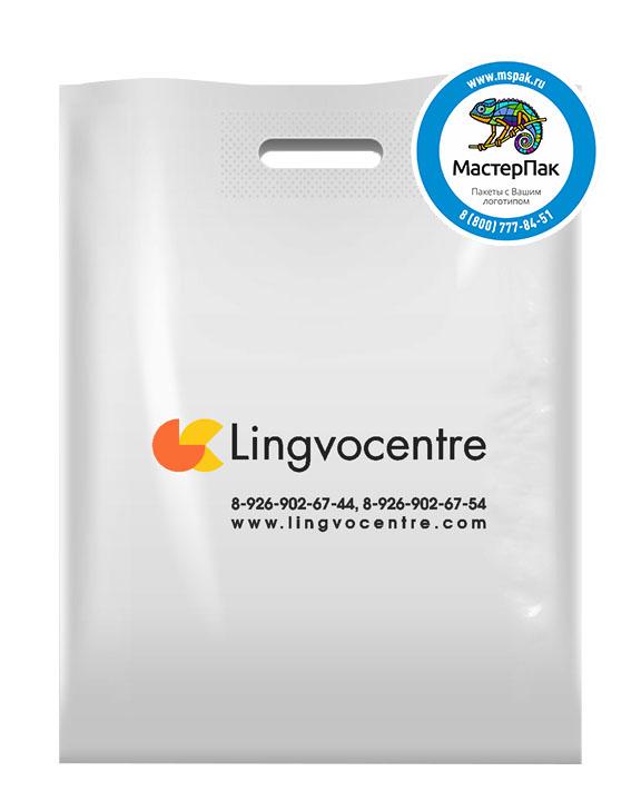 ПВД пакет, 38*50, толщина 70 мкм, с вырубной ручкой и логотипом Lingvocentre