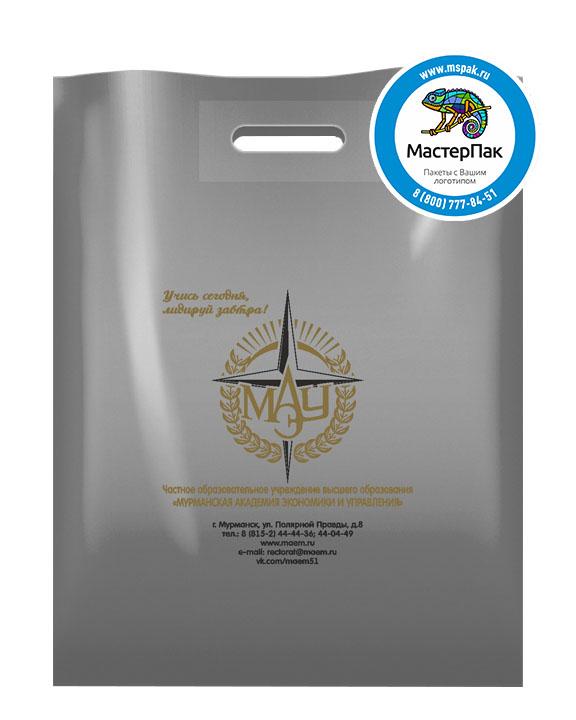 ПВД пакет, 38*50, толщина 70 мкм, с вырубной ручкой и логотипом МАЭУ