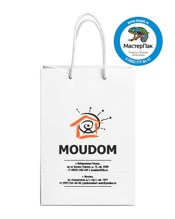 Пакет подарочный, бумажный, 25х38, с люверсами, с логотипом  MOUDOM