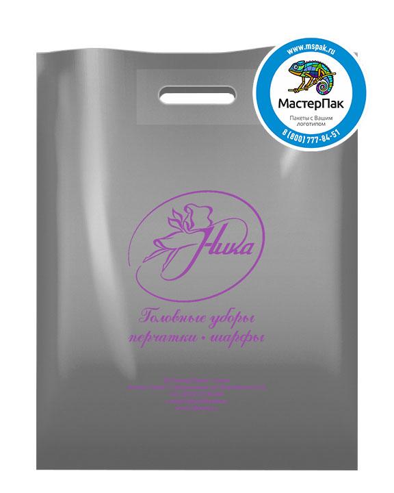 Пакет ПВД с логотипом Ника, Архангельск, 70 мкм, 38*50, серебро