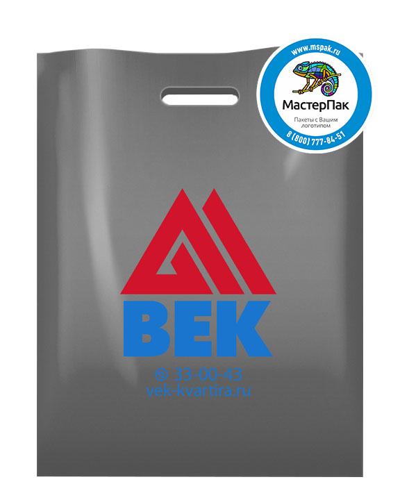 Пакет из ПВД с логотипом ВЕК, Петрозаводск, 70 мкм, 30*40, серебро