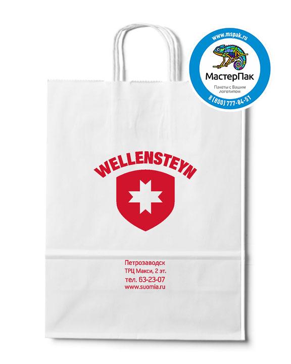 Пакет крафтовый с логотипом WELLENSTEYN, крученые ручки, 35*15*45, Петрозаводск, 80 гр.
