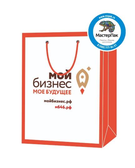 """Пакет подарочный, бумажный, 30*40, 200 гр.,с люверсами, ручка шнур, с логотипом """"Мой Бизнес"""", Курск"""