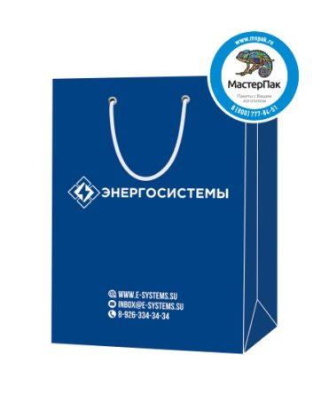 """Пакет подарочный, бумажный, 25*36, 200 гр.,с люверсами, ручка шнур, с логотипом """"Энергосистемы"""", Солнечногорск"""