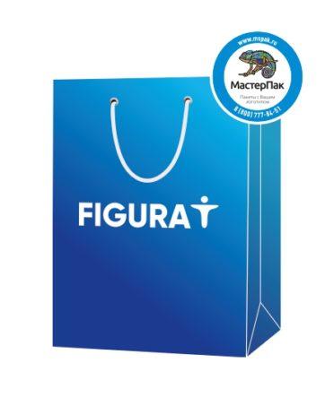 """Пакет подарочный, бумажный, 27*38, 200 гр.,с люверсами, ручка шнур, с логотипом """"FIGURA IT"""", Москва"""