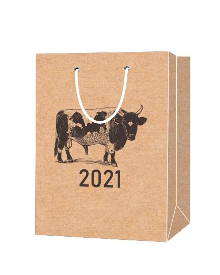 Пакет подарочный, бумажный, 38*50, 200 гр.,с люверсами, ручка шнур, с логотипом 2021, Санкт-Петербург