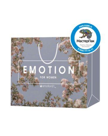 Пакет подарочный, бумажный, 40*30, 200 гр.,с люверсами, ручка шнур, с логотипом EMOTION, Санкт-Петербург