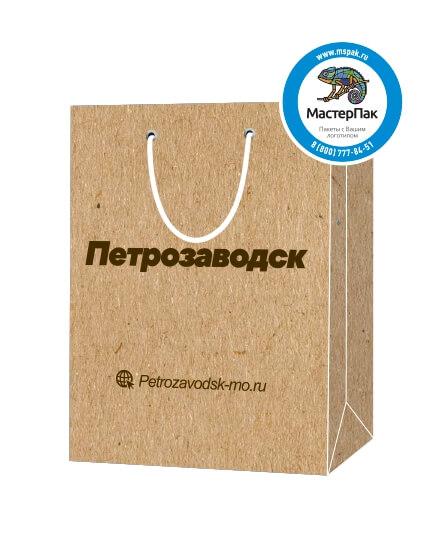 Пакет подарочный, бумажный, 30*40, 200 гр.,с люверсами, ручка шнур, с логотипом Петрозаводск, Петрозаводск